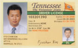 International Driver License Image